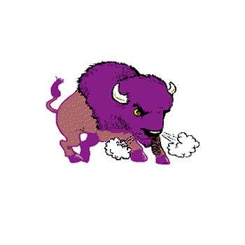 Buffaloes Apparel